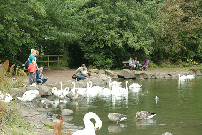 James and Molly feeding the swans